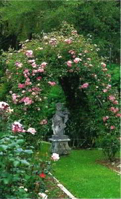 В саду из нескольких арок образован